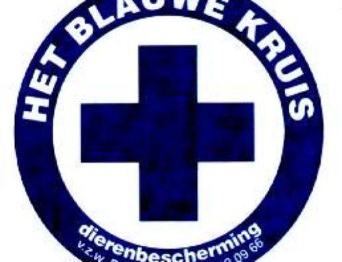 Het Blauwe Kruis Brugge
